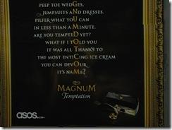 Magnum error